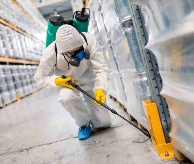Fumigation Services in Abu Dhabi